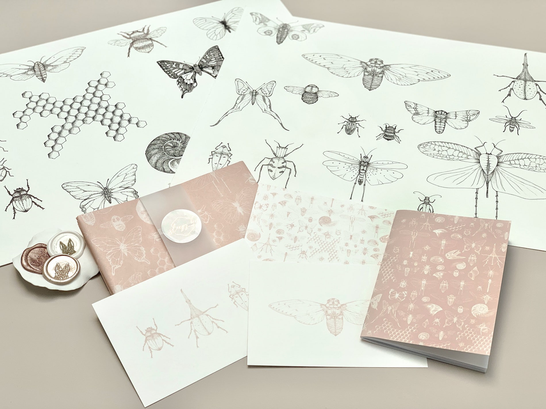 Illustrations for the Darwin custom tissue paper design